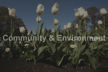 Press release Community & Environment